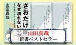 山田真哉 新書ベストセラーの書影